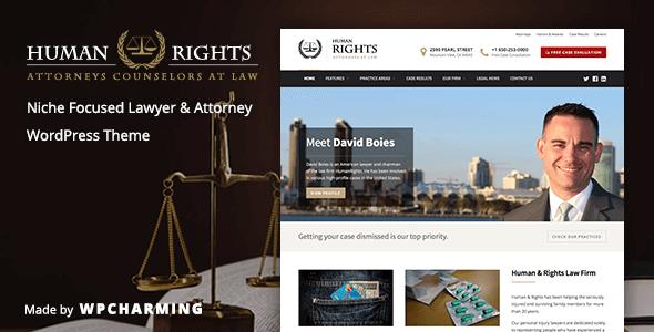 Human Rights Lawyer WordPress Theme